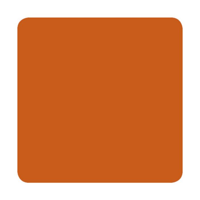 Farba do tatuażu Eternal Ink Muted Earth Tones - Burnt Orange (30ml)