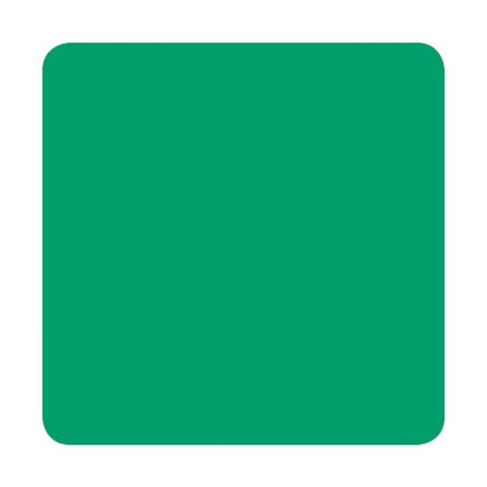 Farba do tatuażu Eternal Ink Chukes Seasonal Spectrum - Coral Green (30ml)